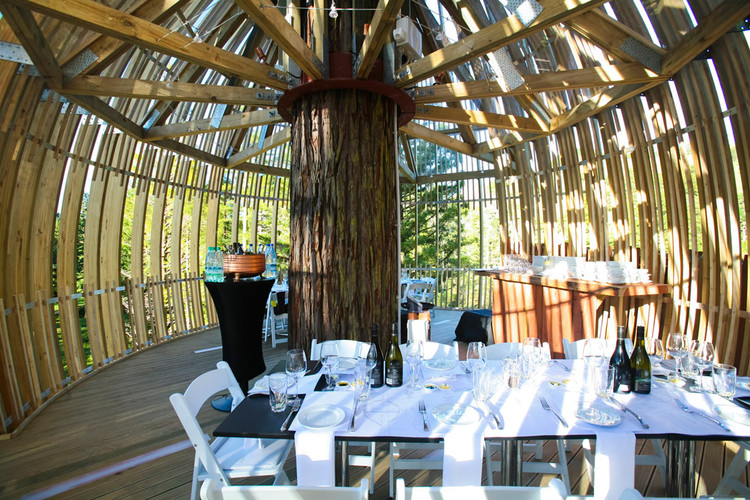 Yellow Treehouse Restaurant / Pacific Environments | ArchDaily