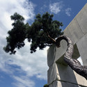 Tree Museum / Enea Garden Design