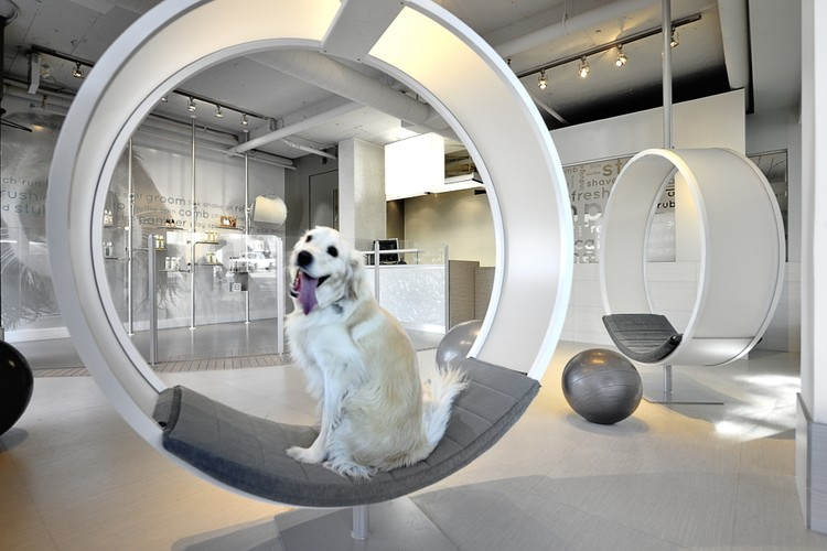 Unleashed Dog Spa / Square One Interiors, © Ihor Pona
