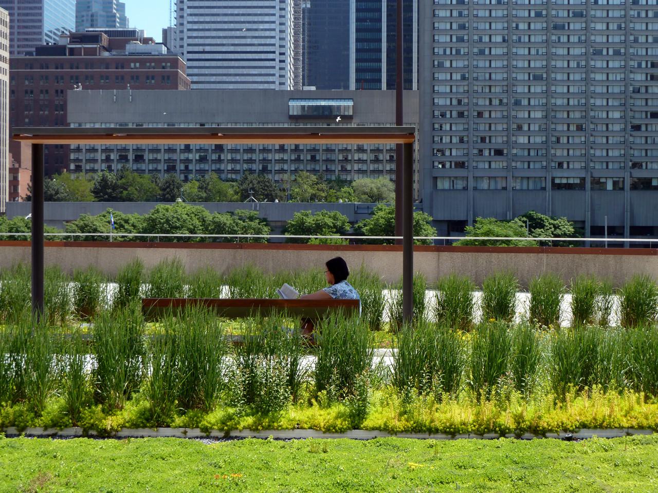NPS Podium Roof Garden PLANT Architect Perkins Will Canada