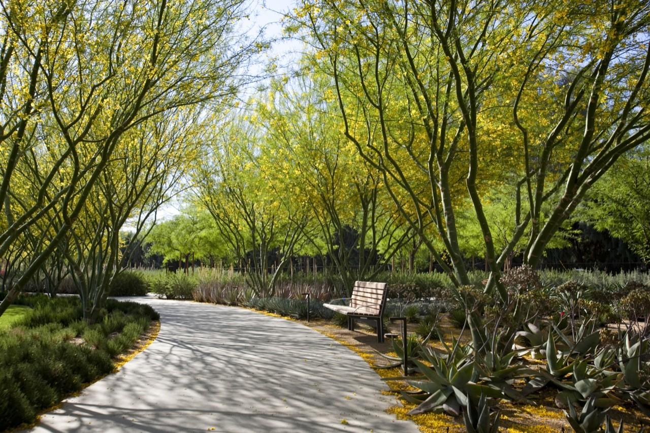 Gallery Of Sunnylands Center And Gardens The Office Of James Burnett Frederick Fisher