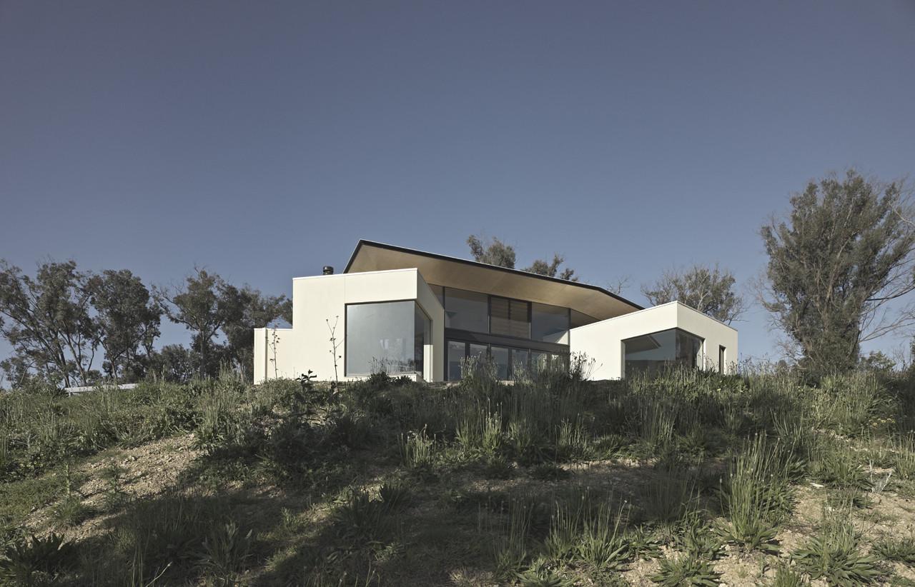 Hillside Habitat / Edwards Moore, © Peter Bennetts