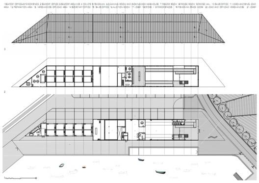 architecture plant