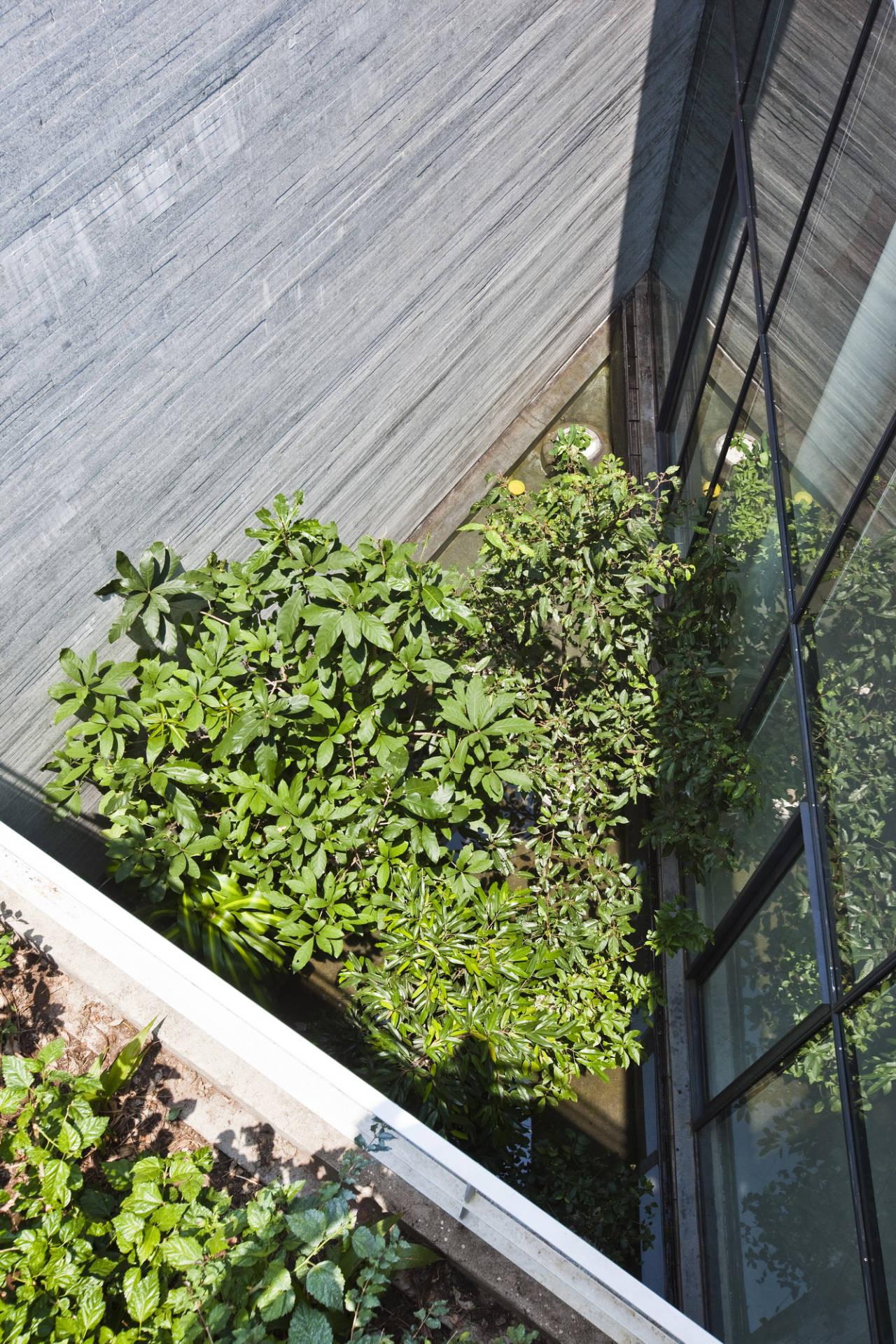 Gia Lai House Vo Trong Nghia Architects ArchDaily Enchanting Stacking Green Vo Trong Nghia Daisuke Sanuki Shunri Nishizawa