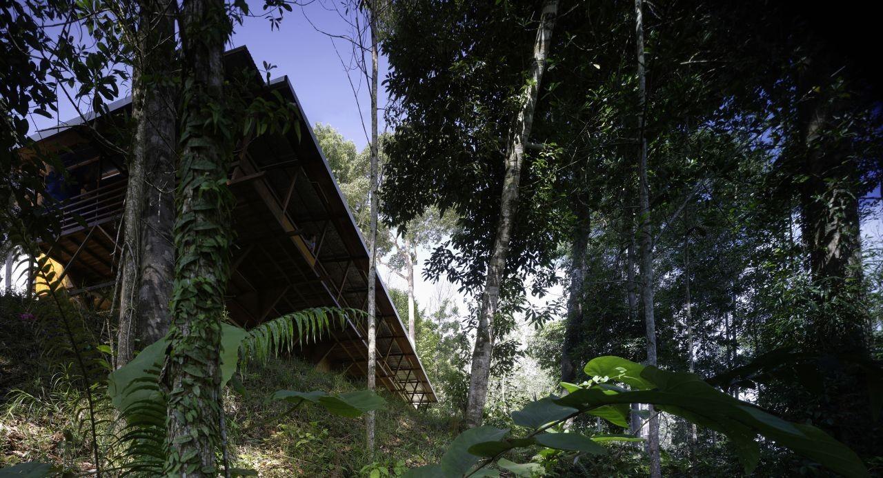 Shelter @ Rainforest / Marra + Yeh Architects, © Brett Boardman