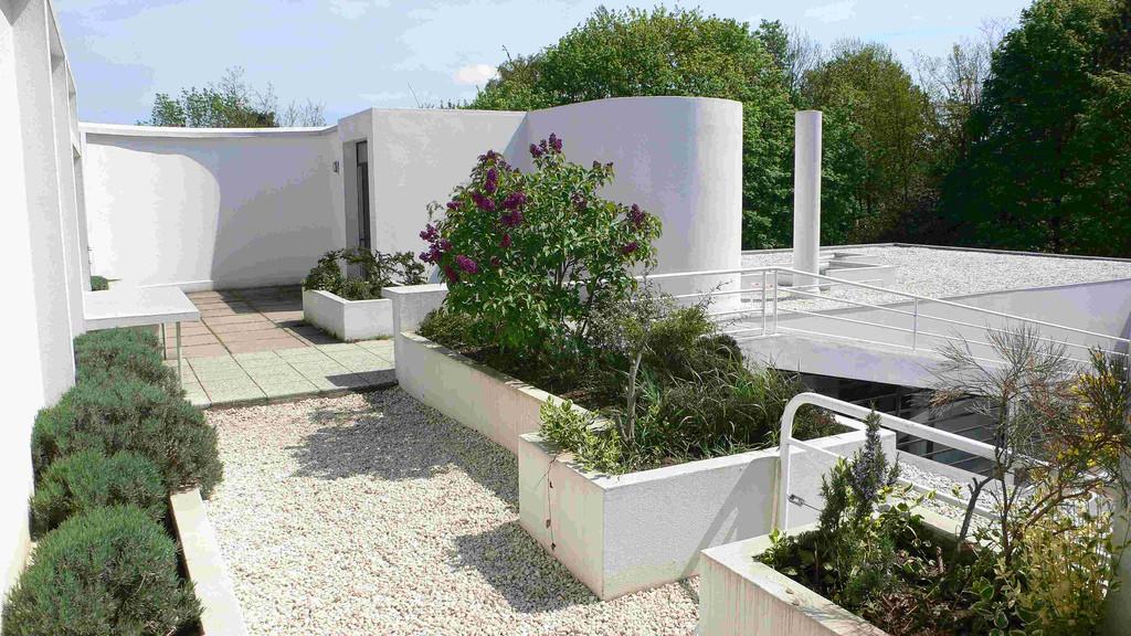 Gallery Of Ad Classics Villa Savoye Le Corbusier 12