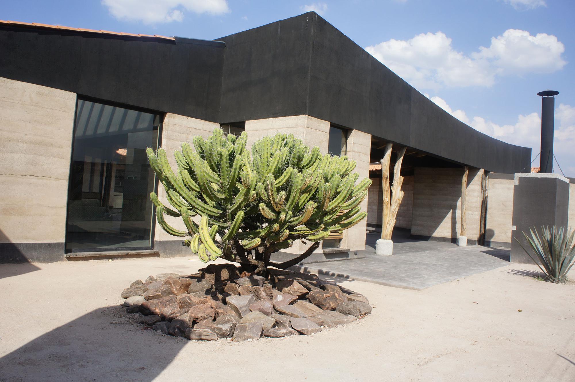 Studio House Sabinos / Juan Carlos Loyo Arquitectura, © Juan Carlos Loyo