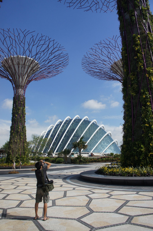 Gardens By The Bay Alive Museum: Cooled Conservatories At Gardens By The Bay / Wilkinson