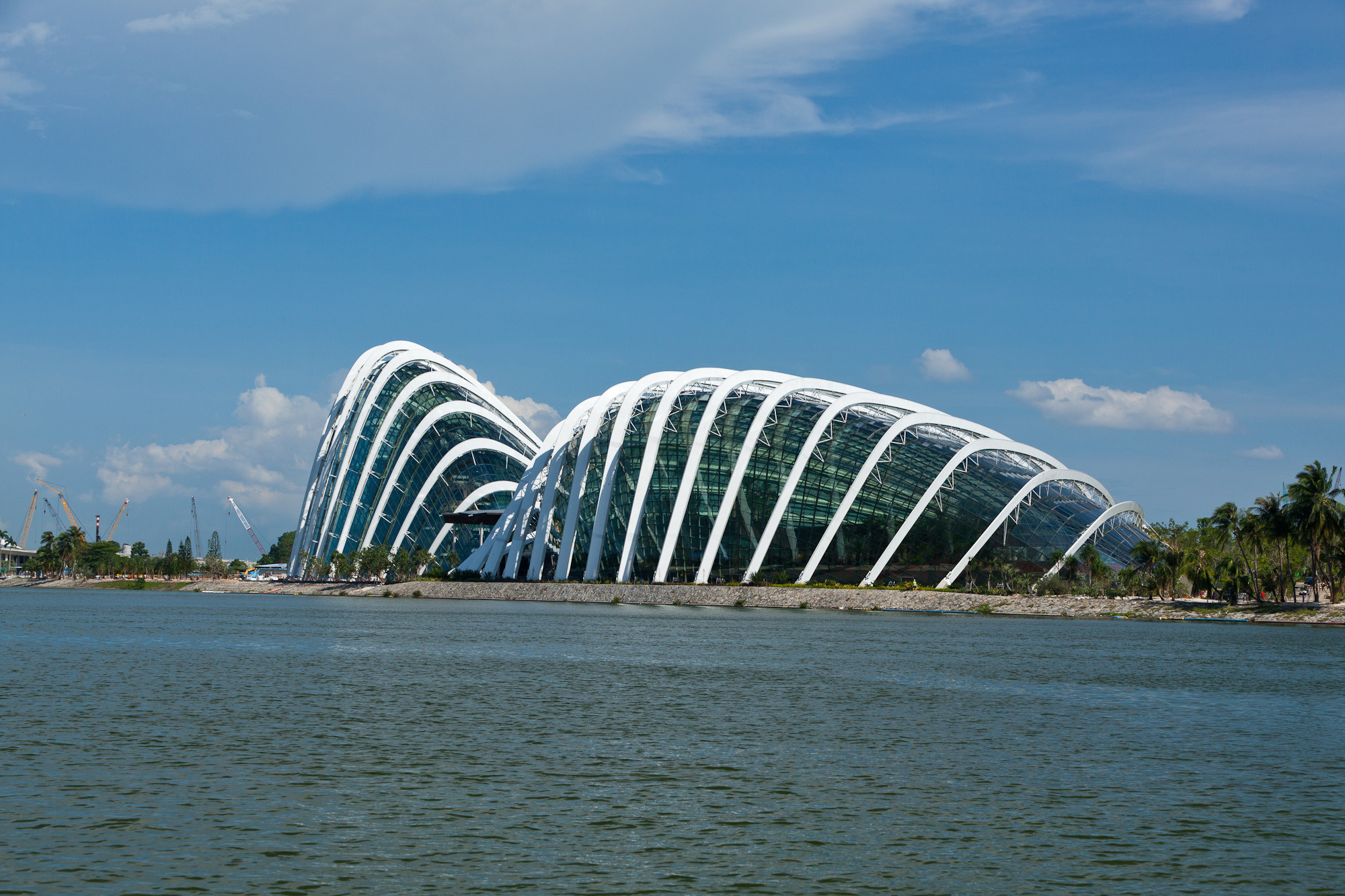 Gallery of cooled conservatories at gardens by the bay - Bay architecture ...