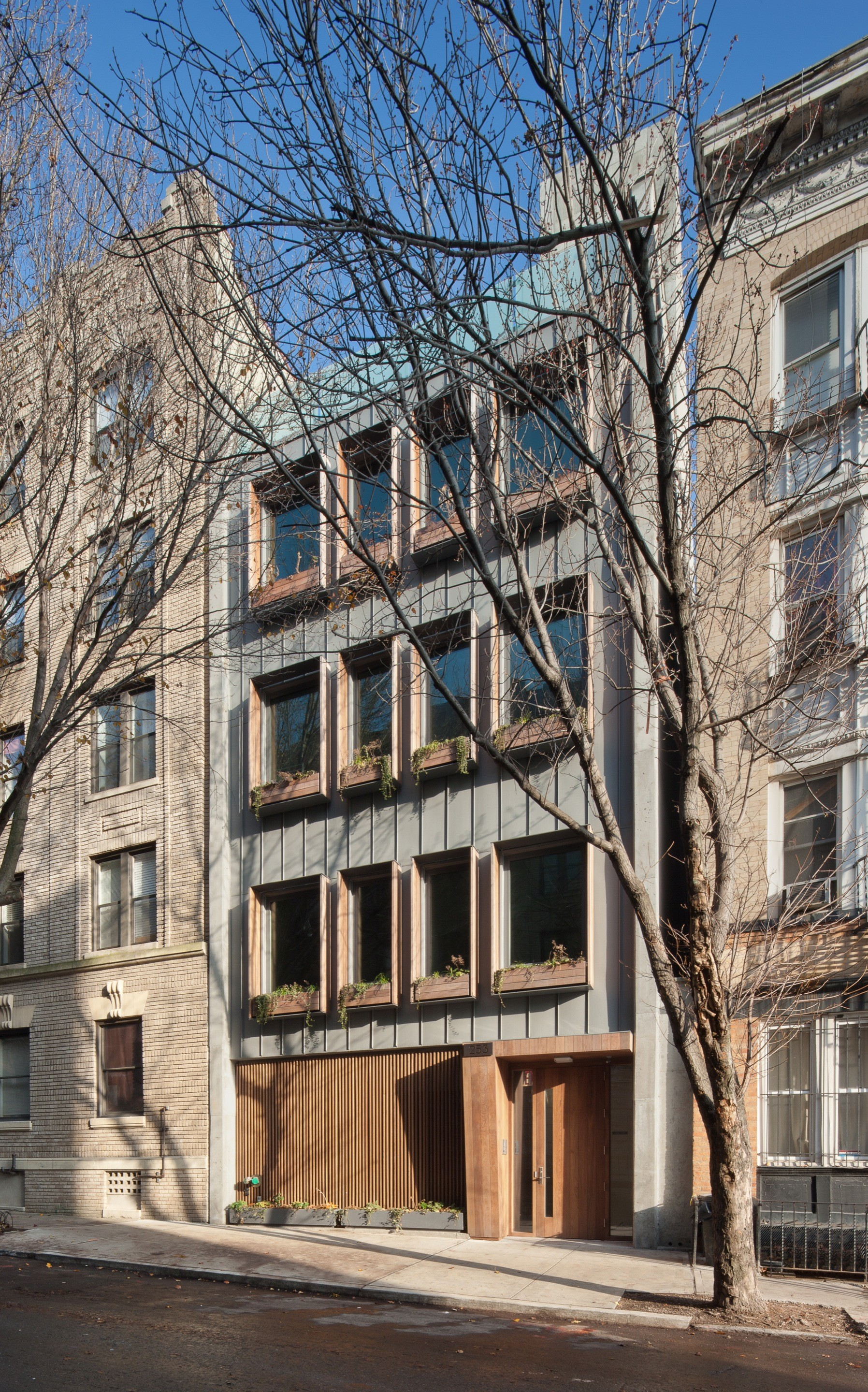 253 Pacific Street / James Cleary Architecture, © James Cleary Architecture