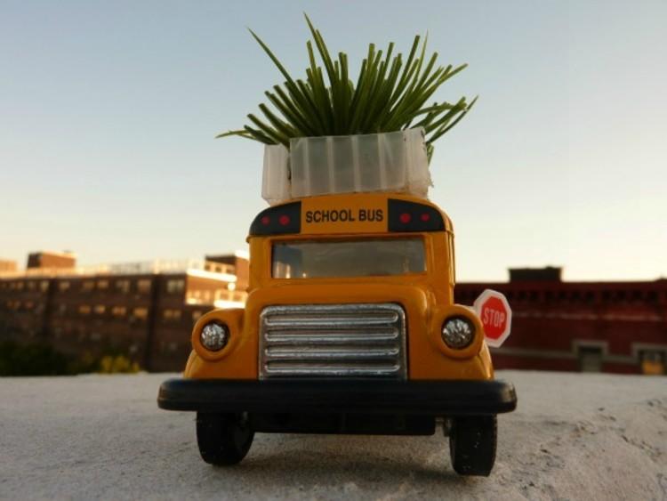 Um jardim sobre o ônibus, via Plataforma Urbana