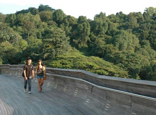 Canopy Walk, Singapura - Via landarchs.com