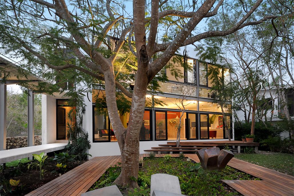 Casa entre rboles mu oz arquitectos archdaily m xico for Casa minimalista bosque