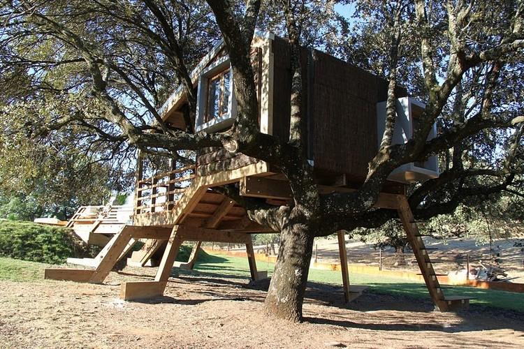 Casa en el árbol enraizada / Urbanarbolismo, Cortesía de Urbanarbolismo