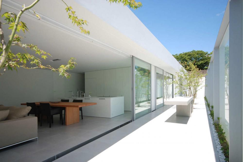Casa de cubierta horizontal shinichi ogawa associates for Cubiertas minimalistas