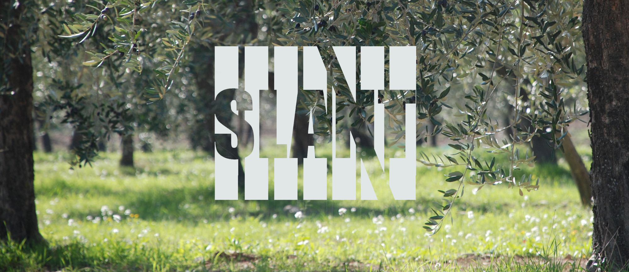 Slant Competition 2013: 'Evoking Memories', Courtesy of Slant Organization