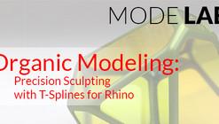 Mode Lab: Organic Modeling: Precision Sculpting with TSplines for Rhino Webinar