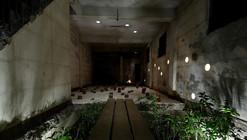 Ruin Academy  / Marco Casagrande