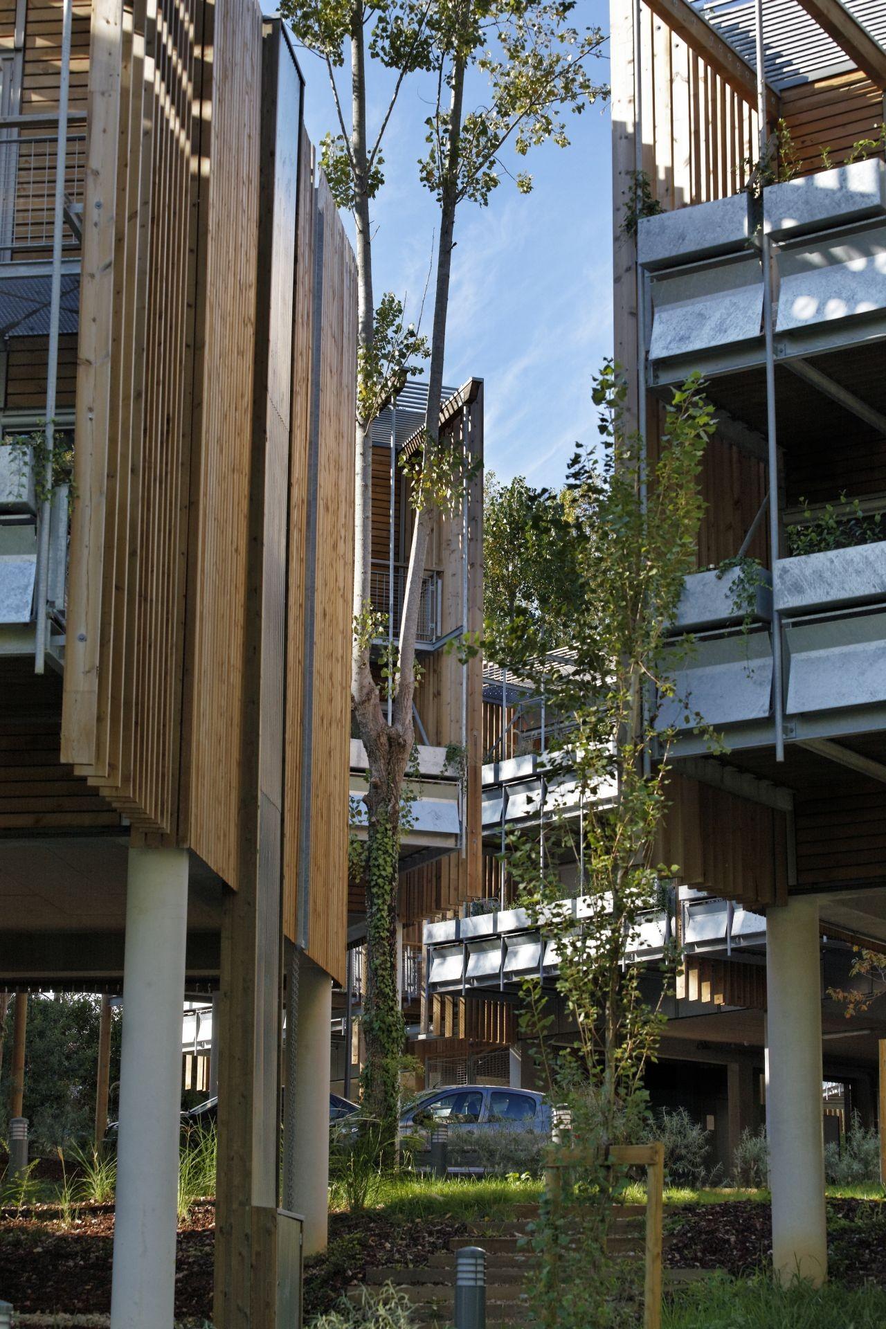 Galeria de eco habita o coletiva la canop e patrick for Agnes b la maison sur l eau