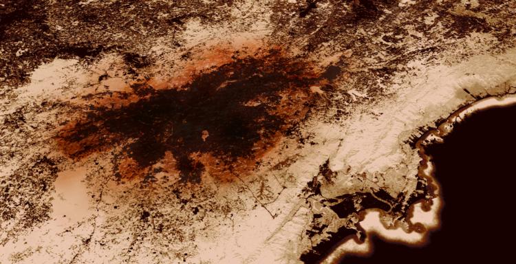Aproximações a uma metástase urbana / Igor Fracalossi