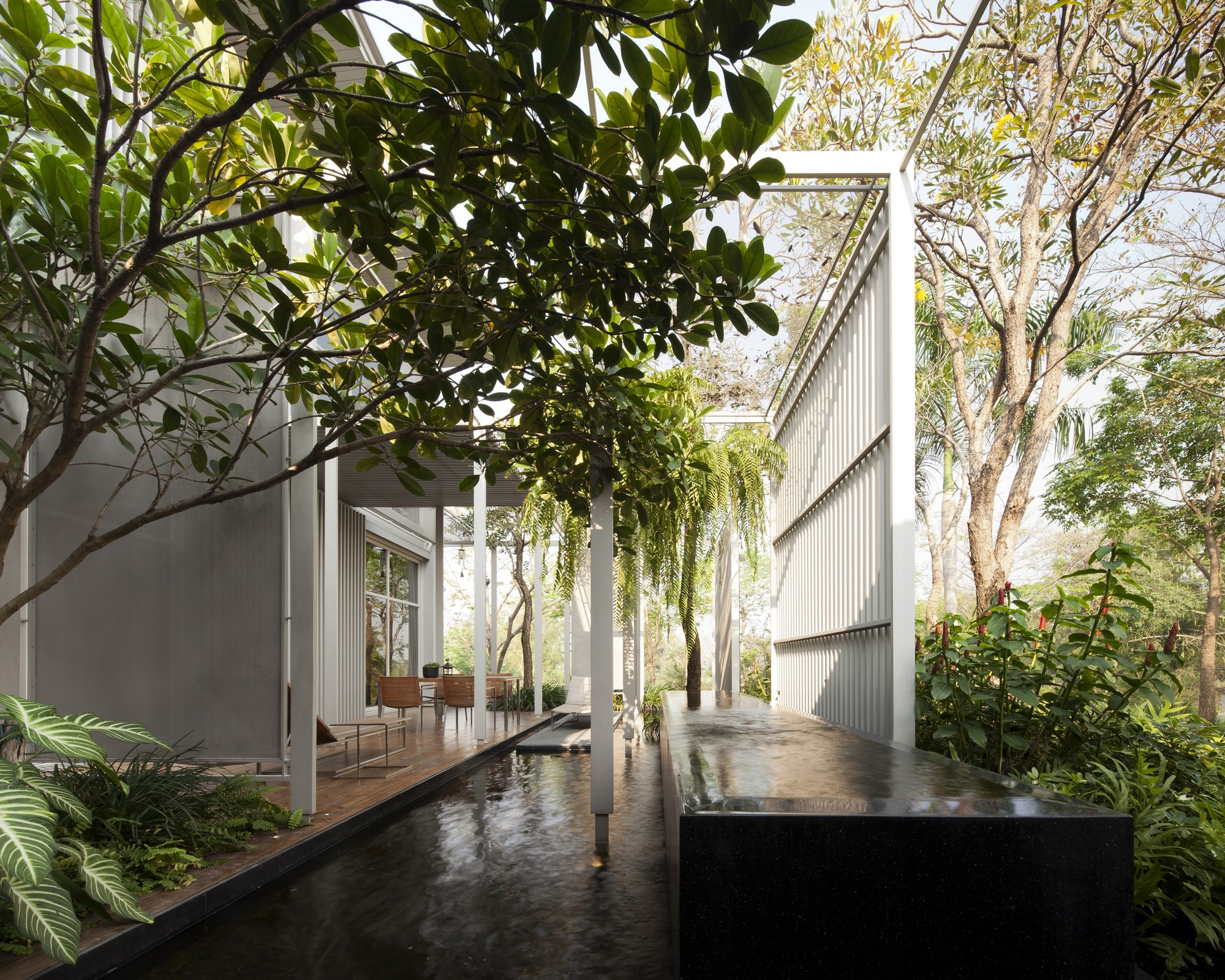Prime nature residence department of architecture for Terrace nature