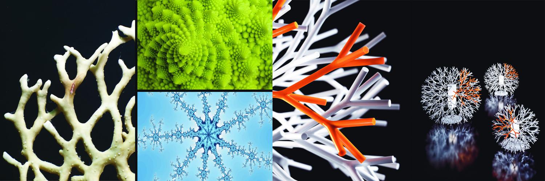 Conferencia Design follows Nature. Reflexiones sobre biomimética, diseño y arquitectura / Barcelona