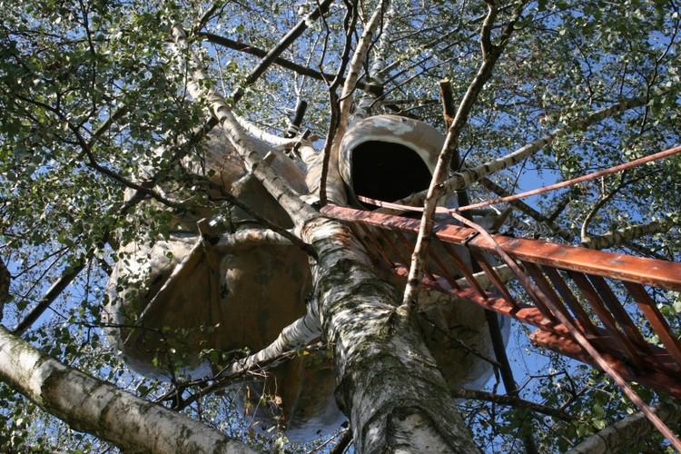 Vivir sobre los árboles: la utópica ciudad orgánica de Roel de Boer
