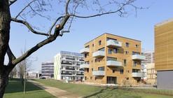 Woodcube / architekturagentur