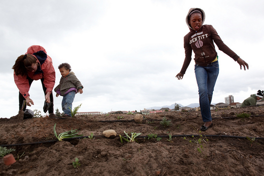 © GreenPop na Cidade do Cabo, África do Sul. © 350.org, vía Flickr.