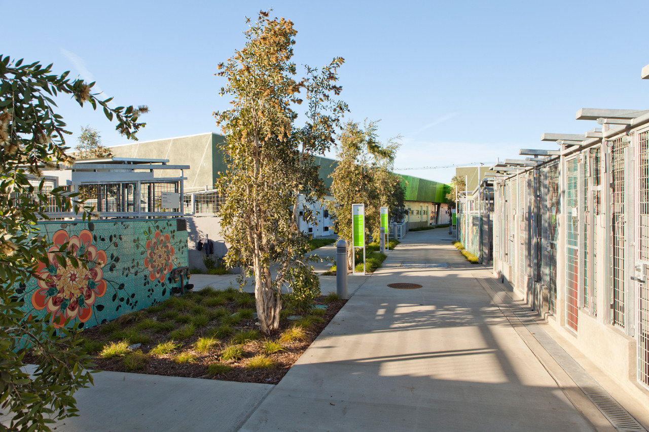 gallery of south los angeles animal care center community center