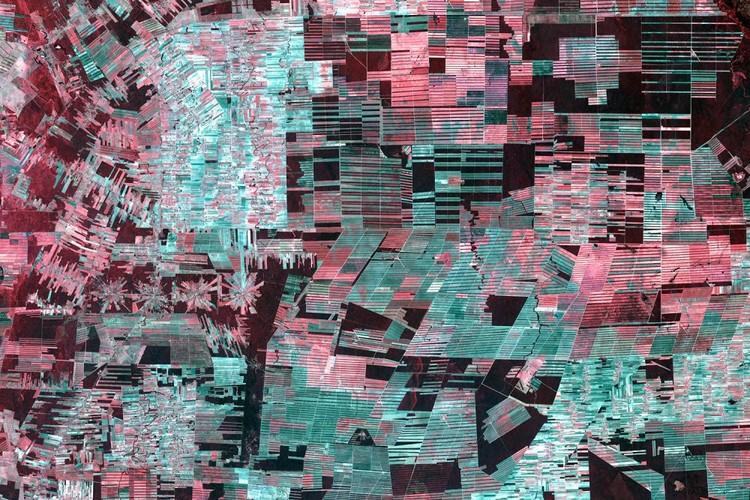 Timelapse da Google revela os efeitos da rápida urbanização, Esta imagem de satélite da Bolívia mostra o dramático desmatamento na Bacia Amazônica. Cortesia de Google.