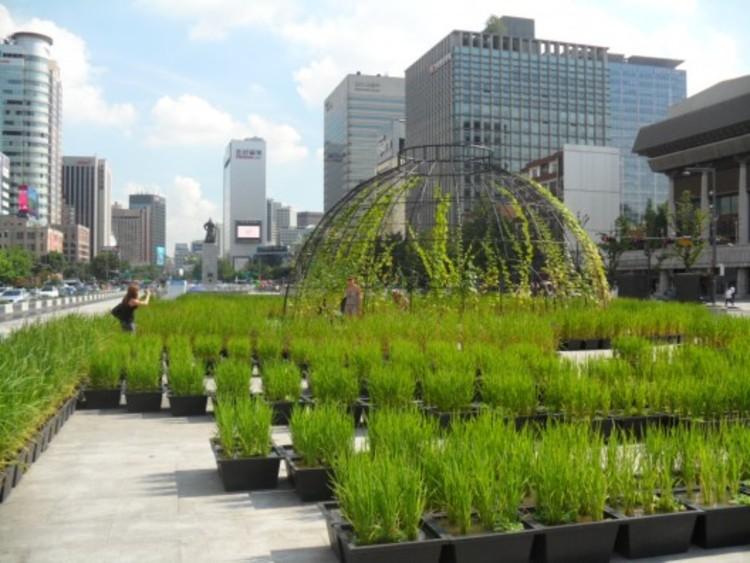 Cidades e a arquitetura da mudança climática