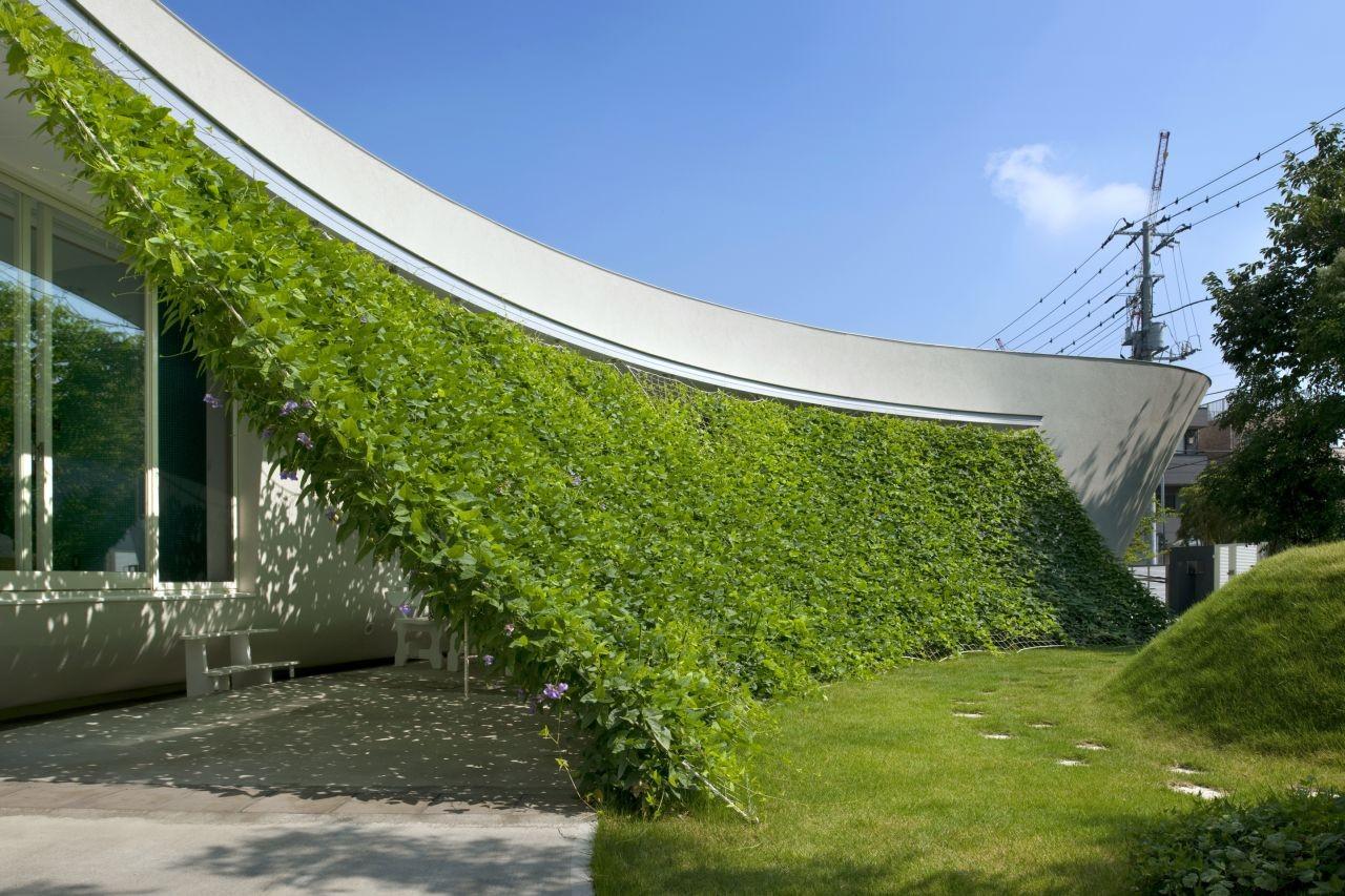 Vertikale Begrünung gallery of green screen house hideo kumaki architect office 9