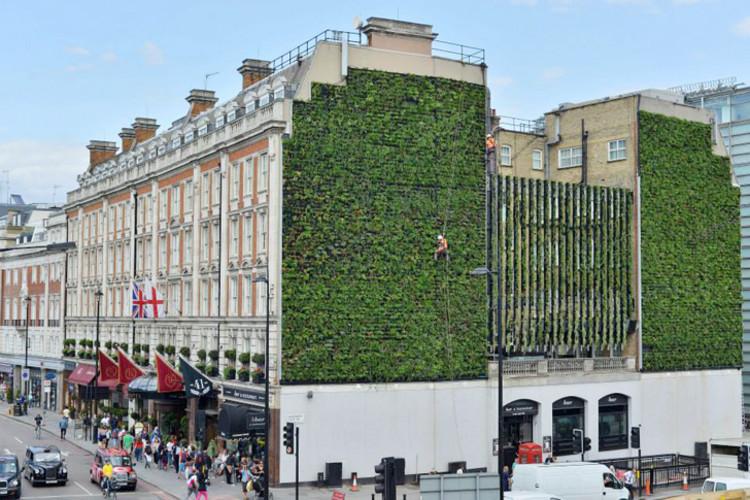 Jardim vertical de 350m² é inaugurado em Londres
