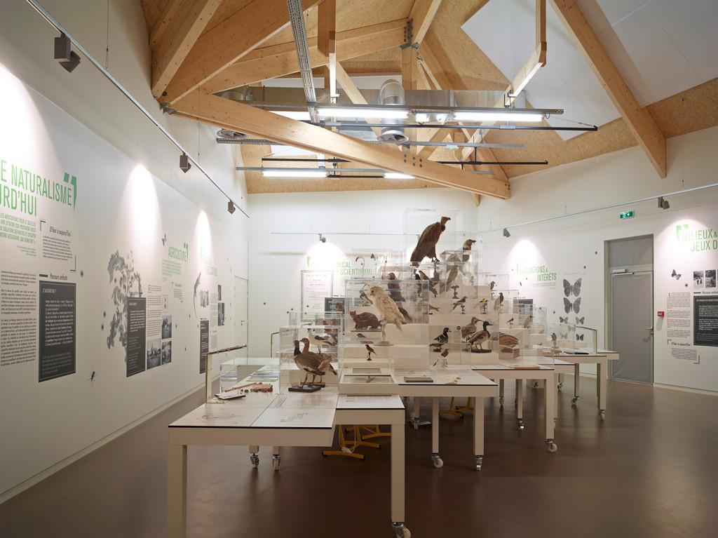 Genesis D Exhibition Design : Galería de museo centro investigación la
