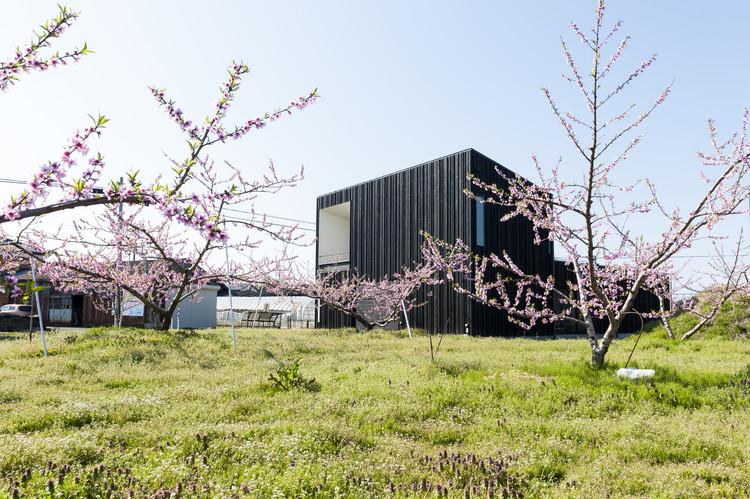 Casa-Pátio em Jardim de Pessegueiros / Takeru Shoji Architects, © Murai Isamu