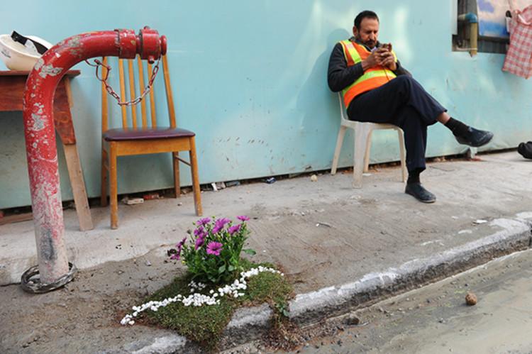 Buracos em ruas e calçadas transformados em pequenos jardins, Cortesia de Pothole Gardens