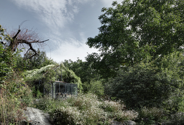 Green Box – un refugio verde consumido por la vegetación / Act Romegialli, © Marcello Mariana
