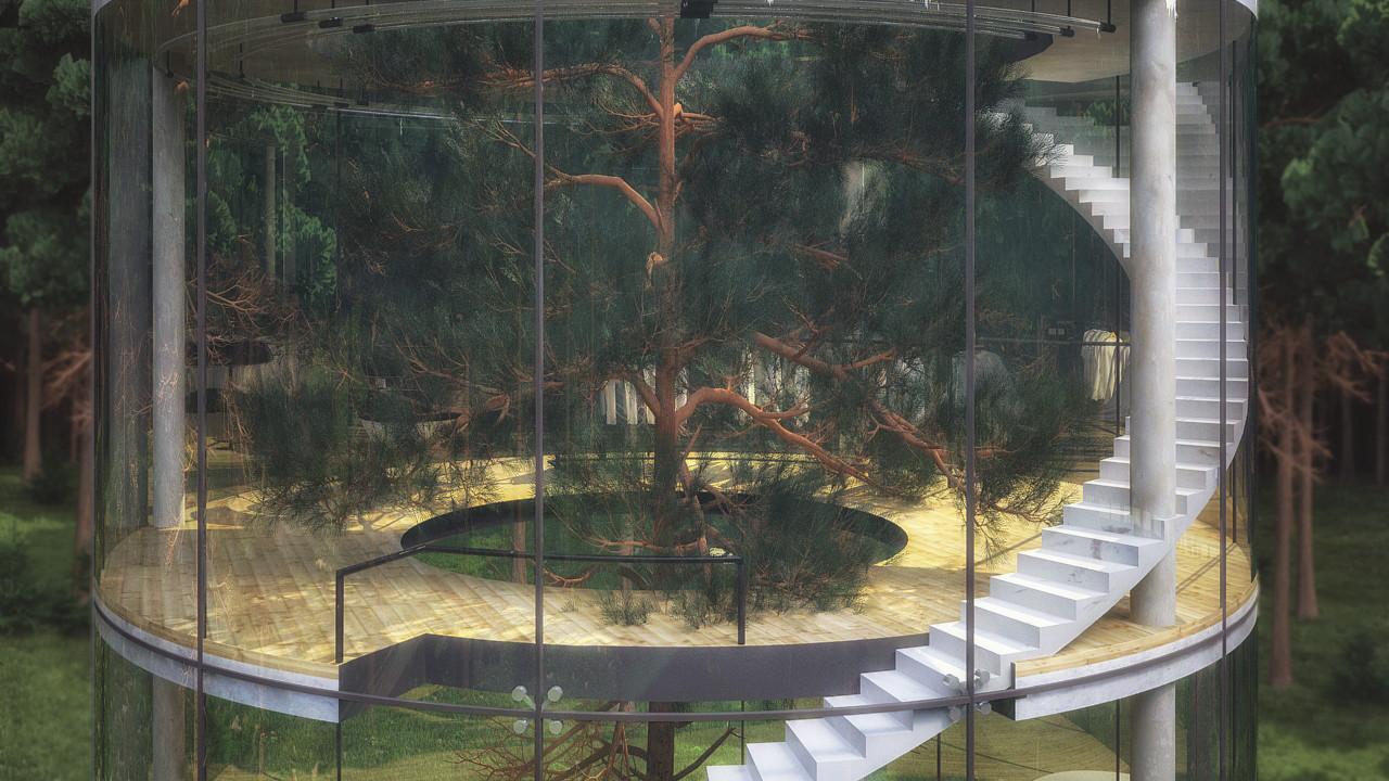 """Proyecto """"Tree in the House"""": una casa de vidrio que cede su intimidad en favor de una experiencia única"""