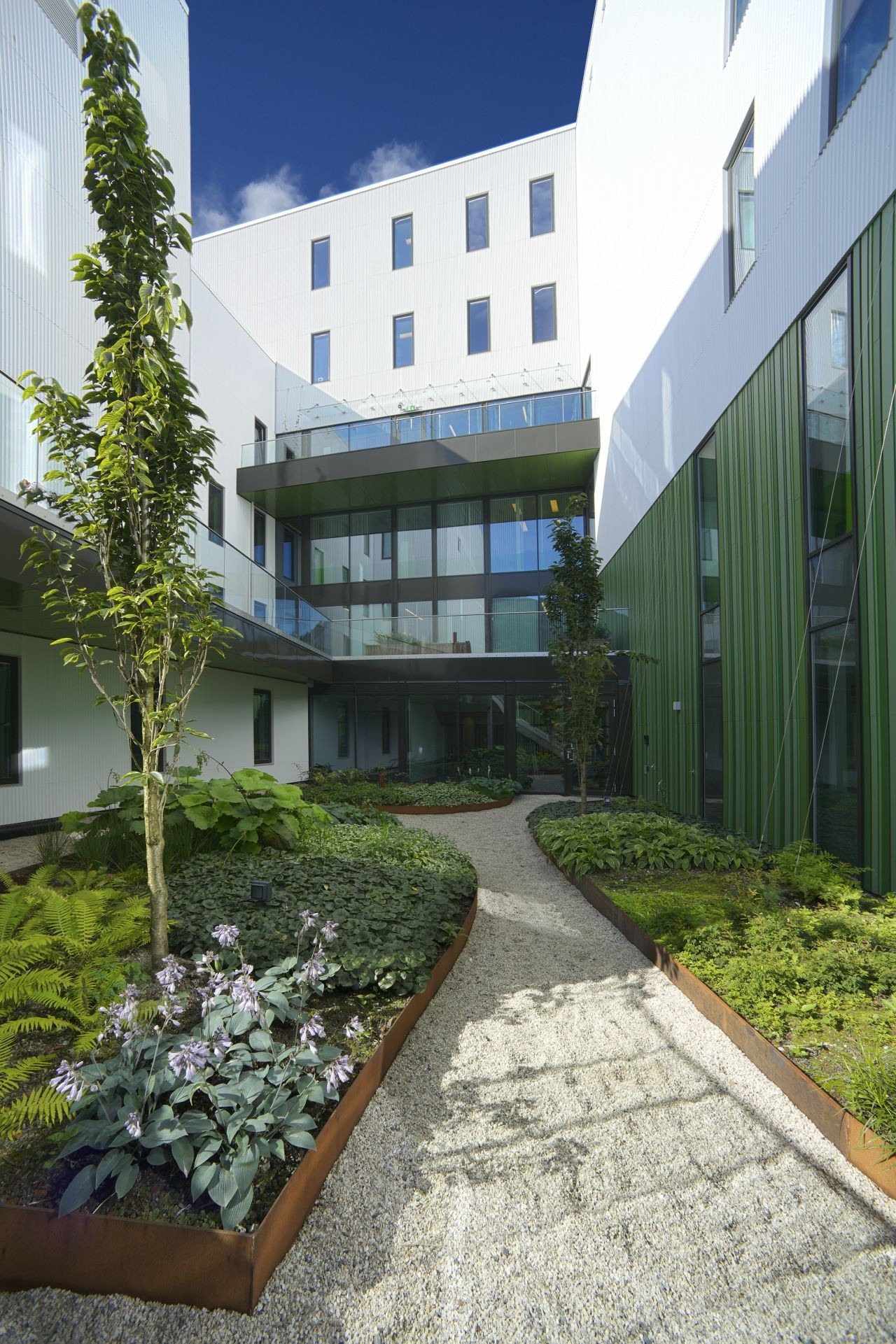 Kronstad Psychiatric Hospital Origo Arkitektgruppe Archdaily