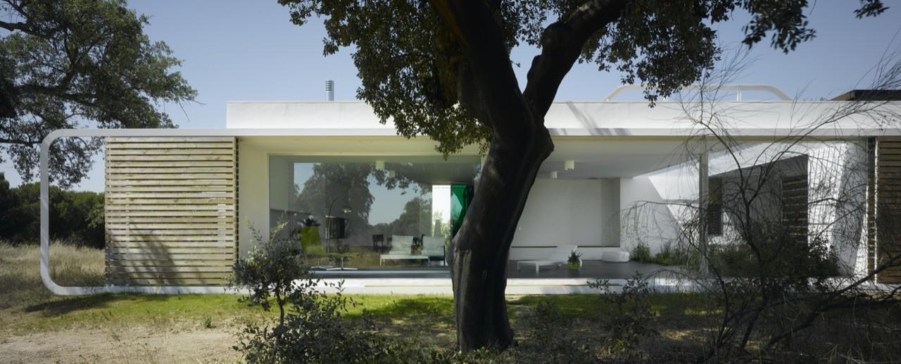 52aac50fe8e44ee88f0000cf House Between Oak Trees Murado And Elvira Arquitectos Photo on Pin Oak