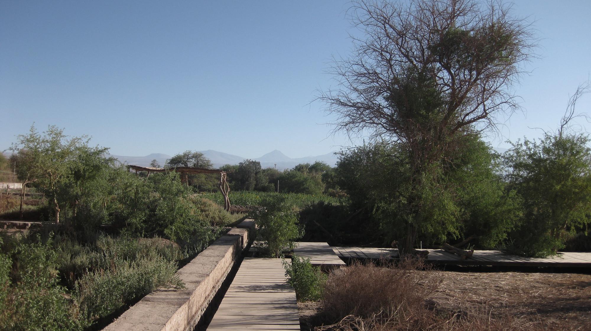 Galer A De Proyecto De Paisajismo Tierra Atacama Por