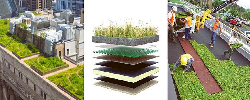 Curso de Especialización: Cubiertas Vegetales para una Edificación Sustentable , Courtesy of CDT