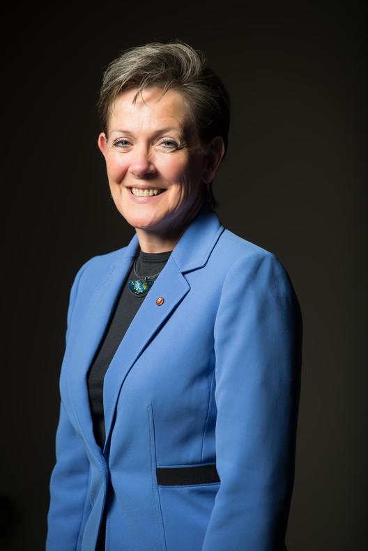 Helene Combs Dreiling, FAIA, Inaugurated as 2014 AIA President, Helene Combs Dreiling. Image © William Stewart