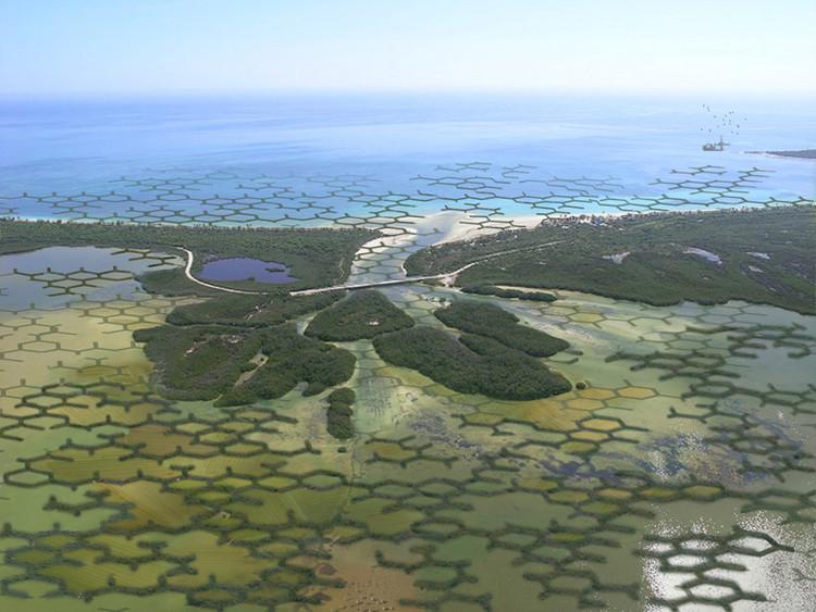 CALTROPe: um mangue modular para enfrentar o aumento do nível do mar, © Szövetség'39