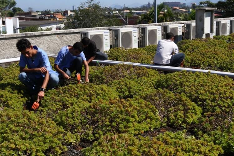 Colégio público do Rio de Janeiro é a primeira escola sustentável certificada da América Latina, © Márcia Costa/Seeduc