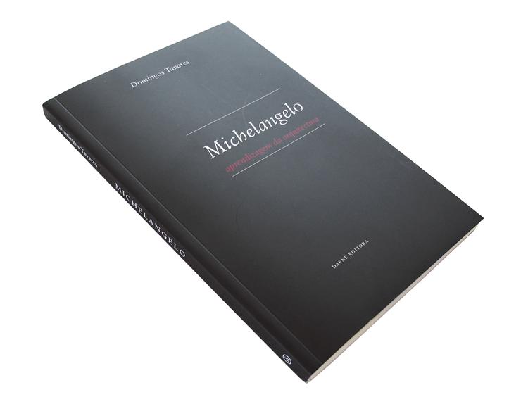 Michelangelo: aprendizagem da arquitetura / Domingos Tavares