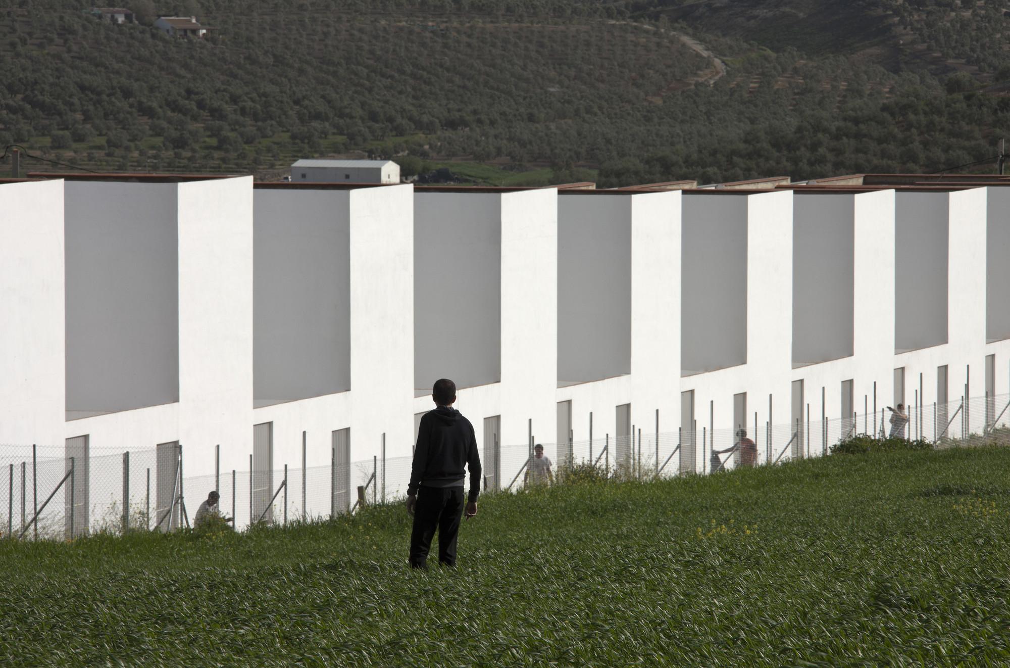 20 Social Dwellings in El Saucejo / Suárez Corchete, © Fernando Alda