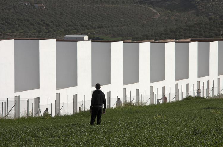20 Habitações Sociais em El Saucejo / Suárez Corchete, © Fernando Alda
