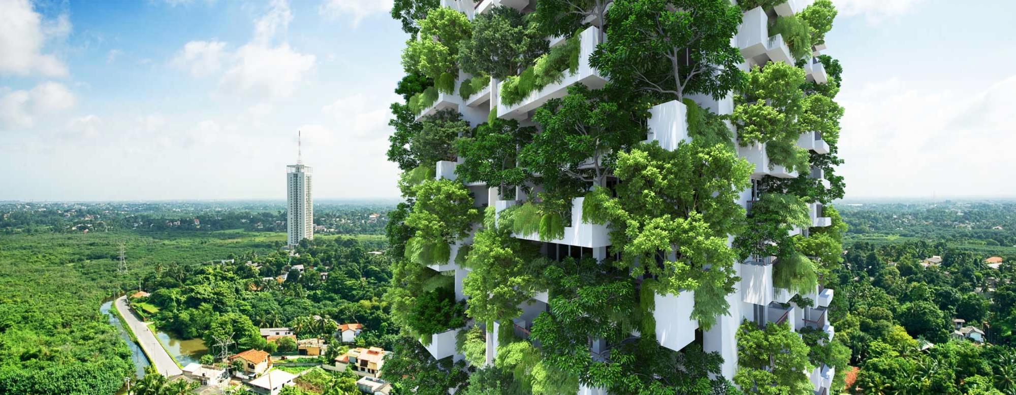 Milroy Perera Designs Worldu0027s Tallest Residential Vertical Garden,Courtesy  Of Clearpoint / Milroy Perera
